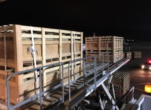 Cargo-Livestocks